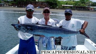 Wahoo 400x225 PECES DE MAR