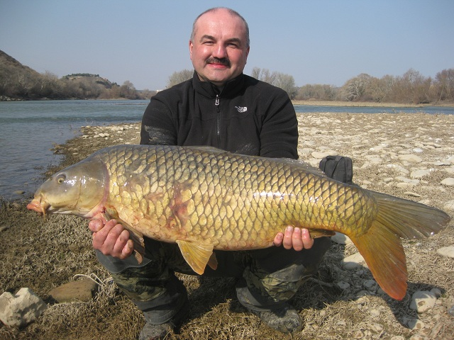 CARPA COMUN 1 CARPFISHING EN EMBALSE DE MEQUINENZA