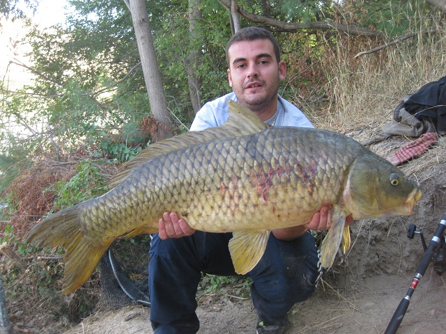 GUIAS DE PESCA DE LA CARPA 21 CARPFISHING EN EMBALSE DE MEQUINENZA
