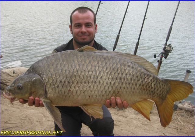 GUIDES CARP FISHING