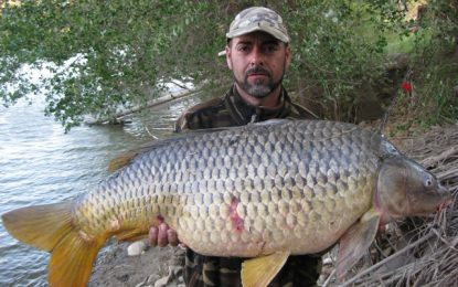 CATFISH AND CARP FISHING IN AUTUMN