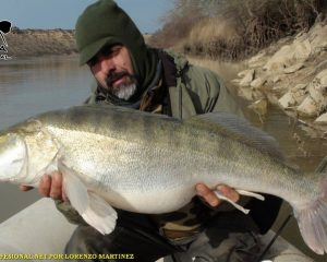 FISHING GUIDE zander MEQUINENZA