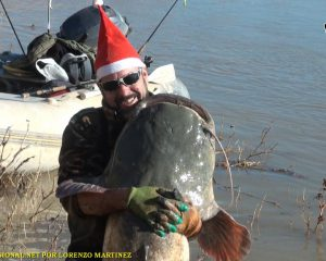 CATFISH FISHING GUIDE IN WINTER MEQUINENZA RIO EBRO